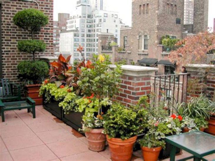 Rooftop Garden Ideas 2