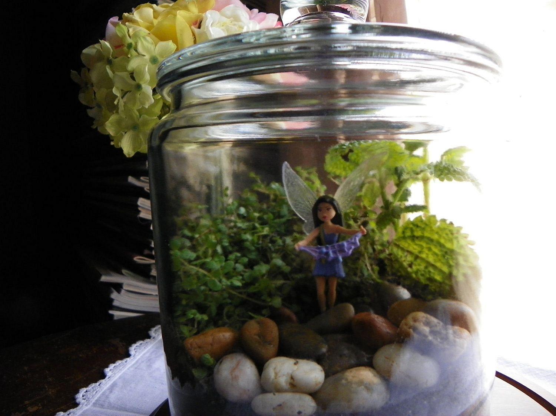 DIY Fairy Terrarium Indoor Garden 11