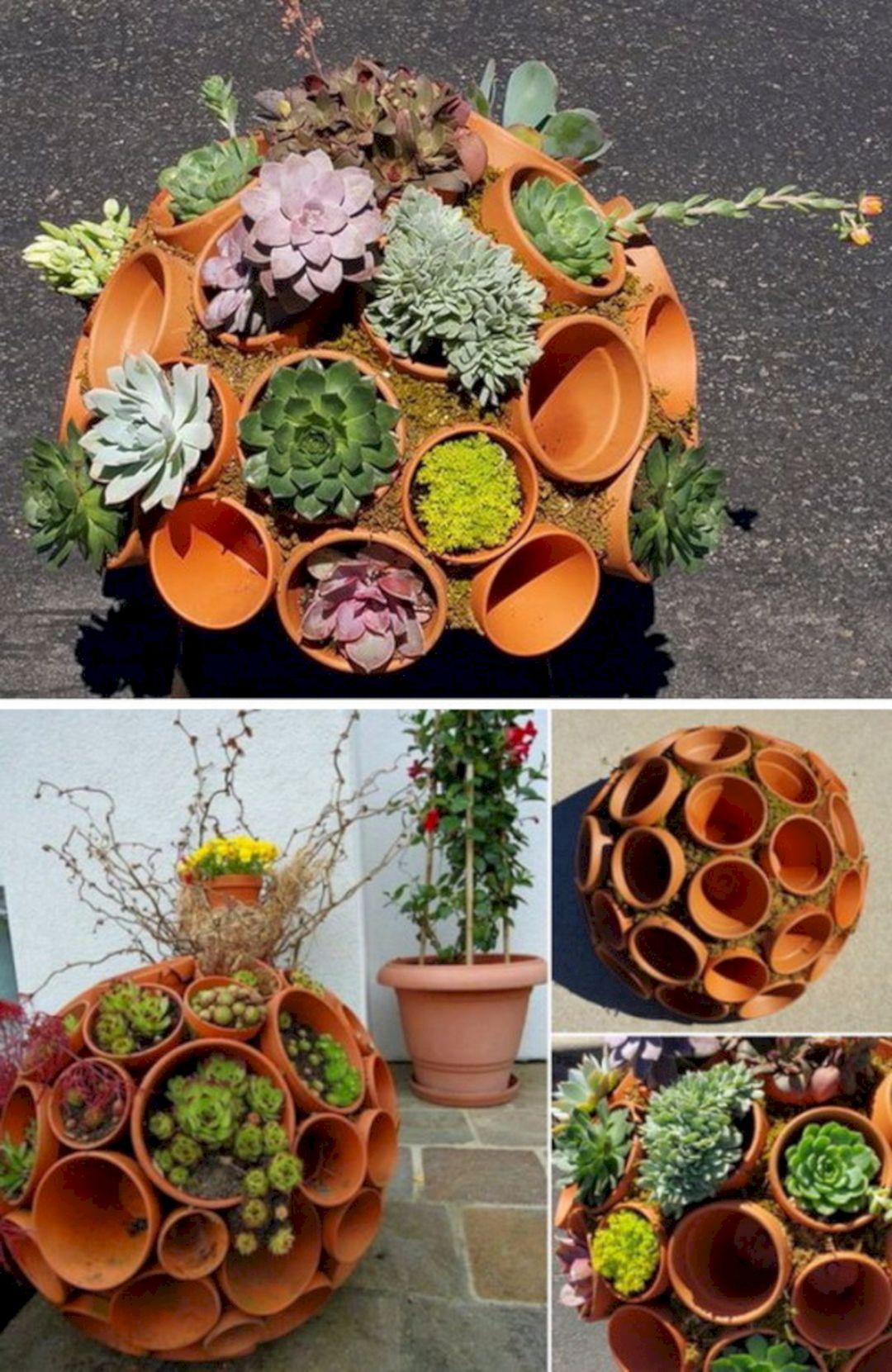Unique succulent garden ideas