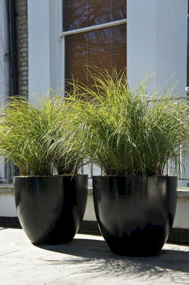 Contemporary Outdoor Planters Ideas 20