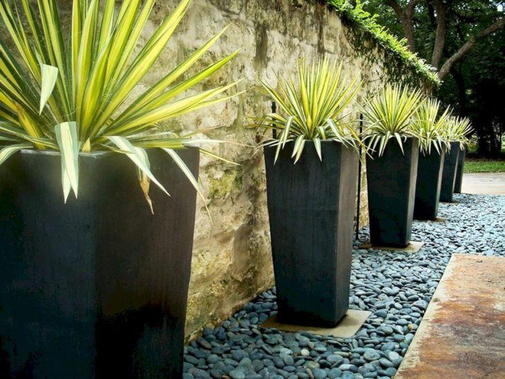 Contemporary Outdoor Planters Ideas 25