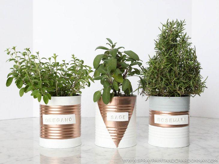 Indoor Herb Garden 220