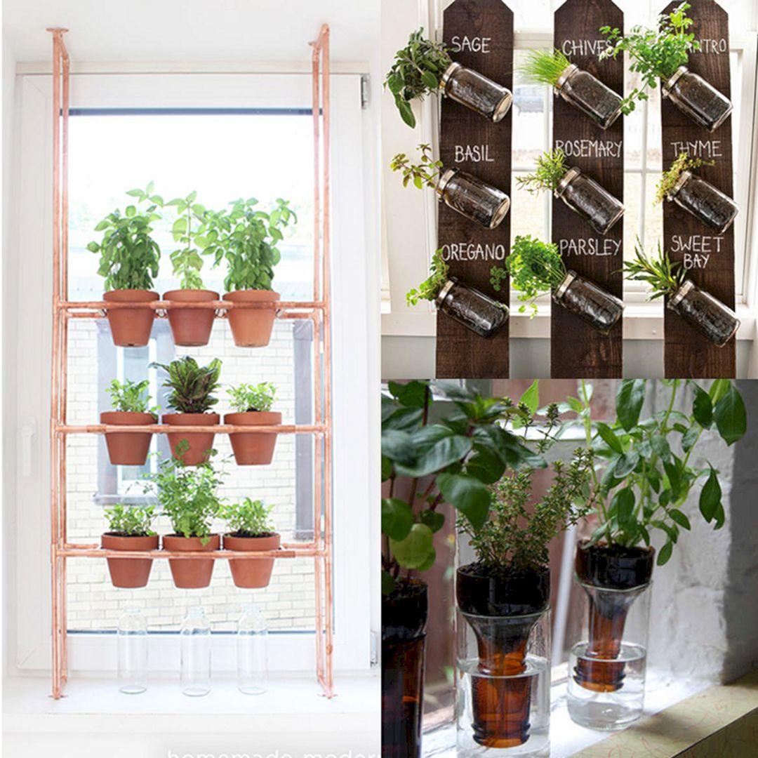 Indoor Herb Garden 280
