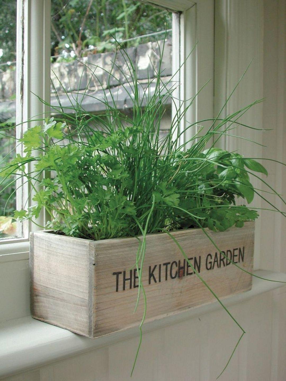 Indoor Herb Garden 30