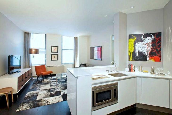 Studio Apartment Interior 242