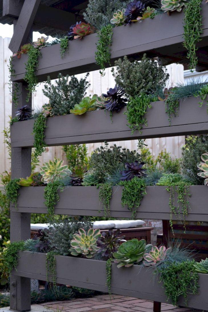 Living Wall Front Home Garden 19