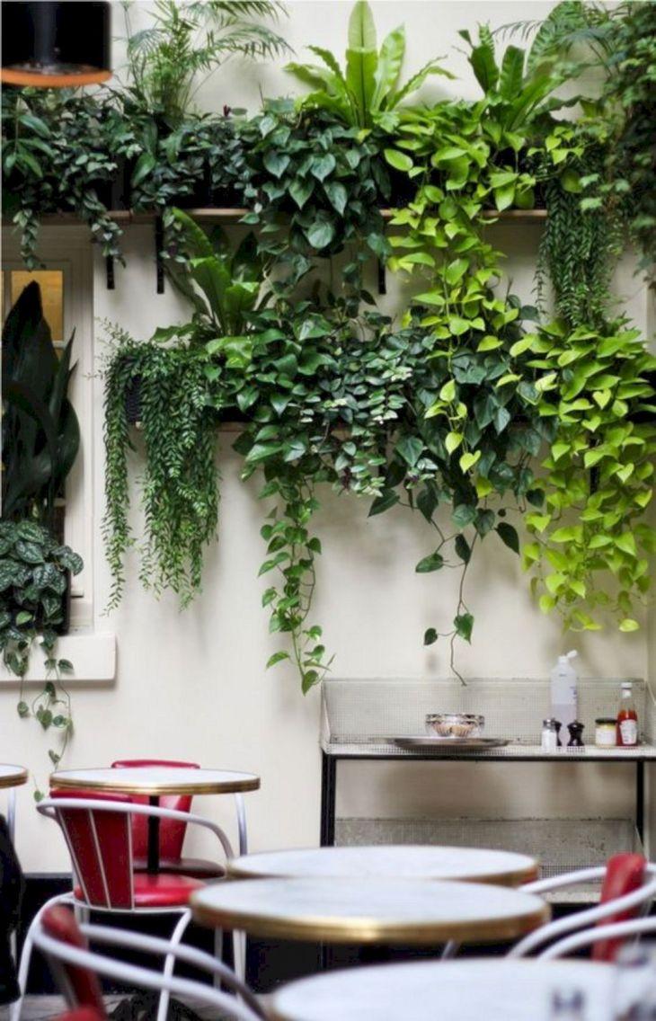 Living Wall Front Home Garden 21