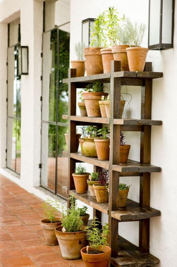 Best DIY Indoor Plans Shelf