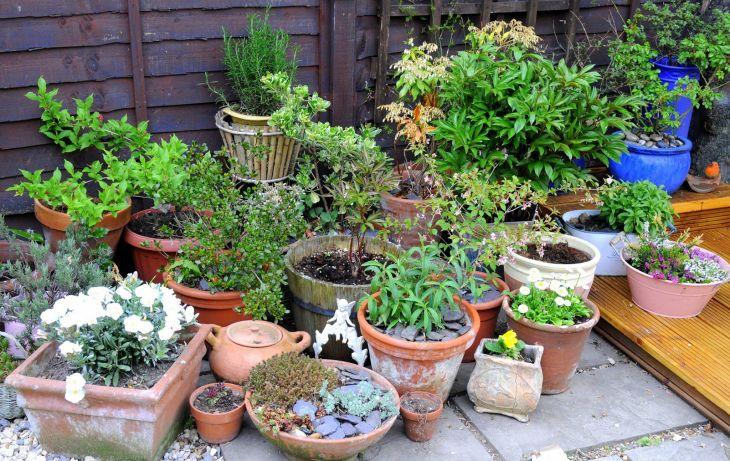 Garden Pot Patio Ideas