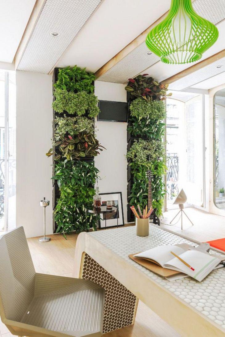 Best Simple Indoor Plants Ideas