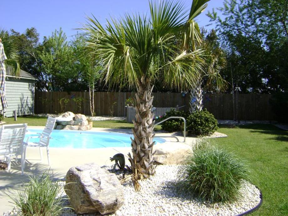 Low Maintenance Landscaping around Pool 4