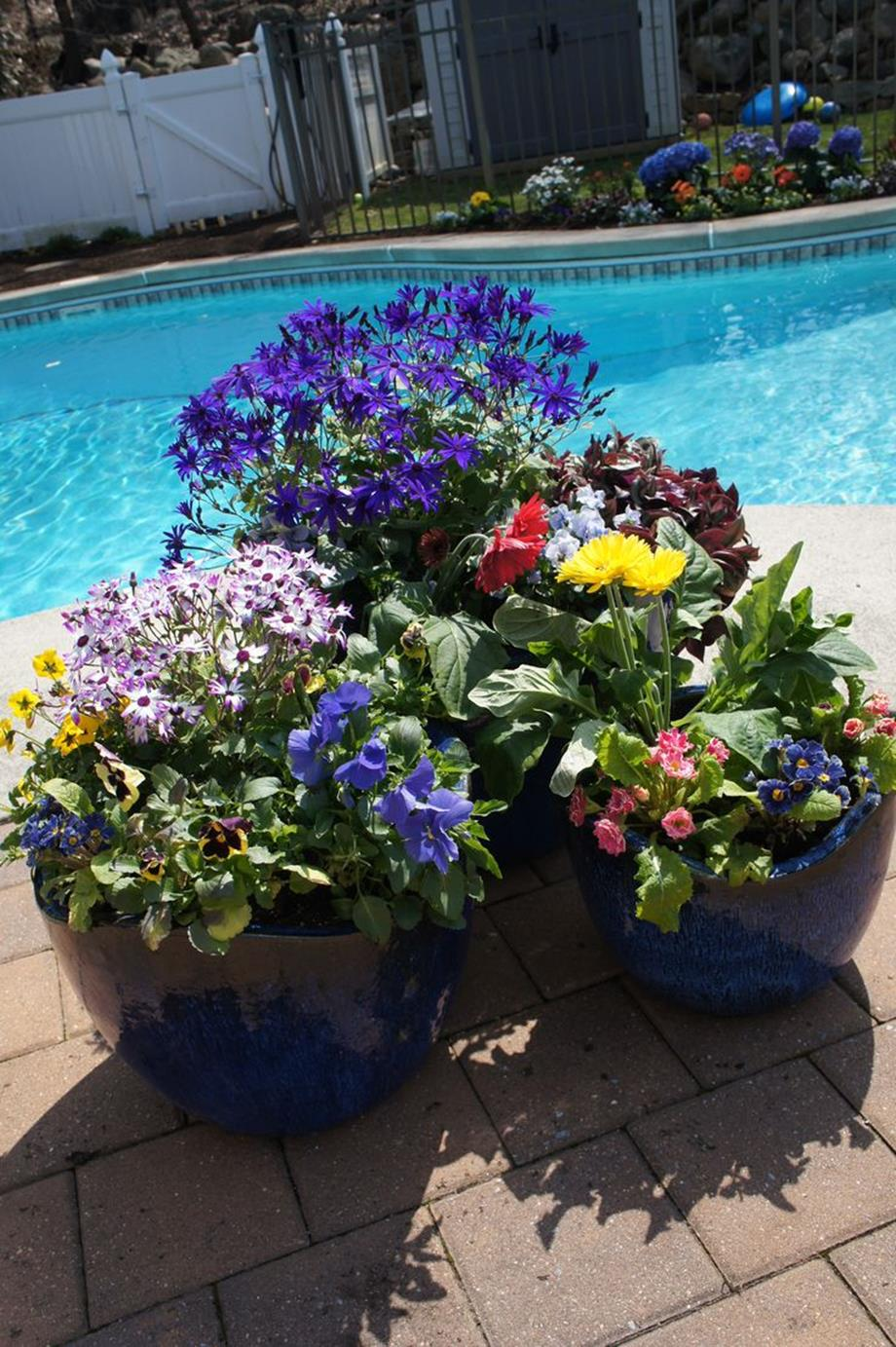 Spring Container Gardening Ideas 11