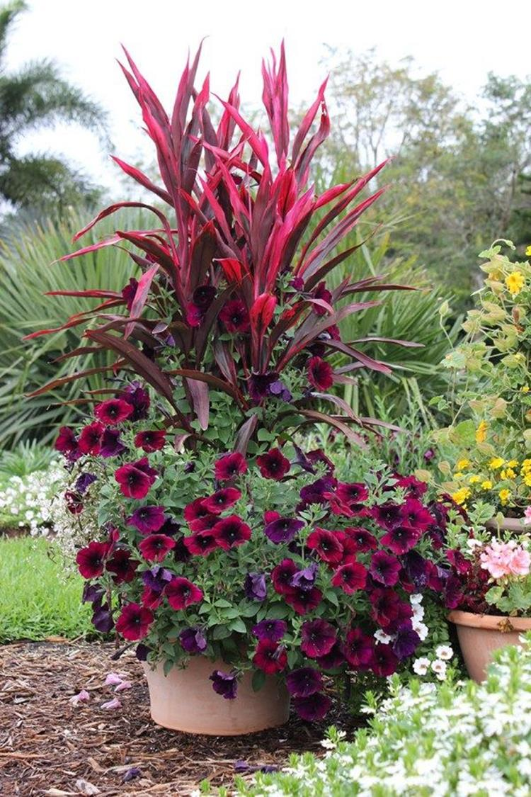 Spring Container Gardening Ideas 24