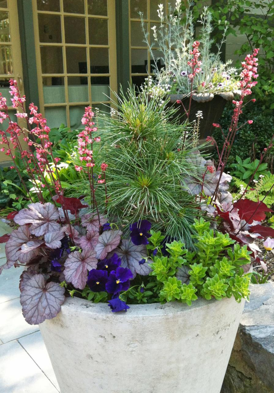 Spring Container Gardening Ideas 34