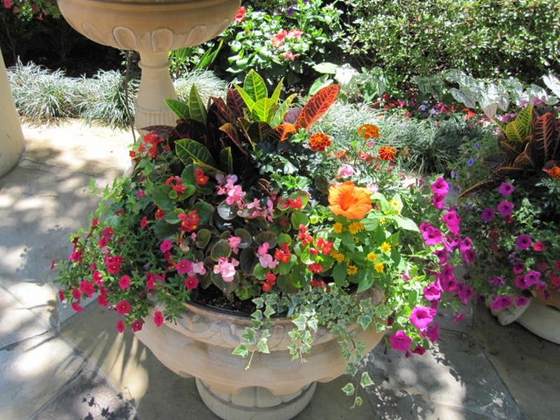 Spring Container Gardening Ideas 40