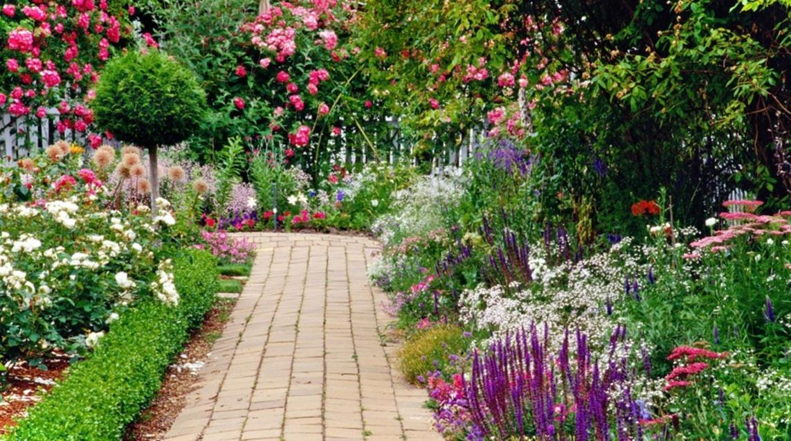 Best Plants for a Cottage Garden and Design Ideas 31