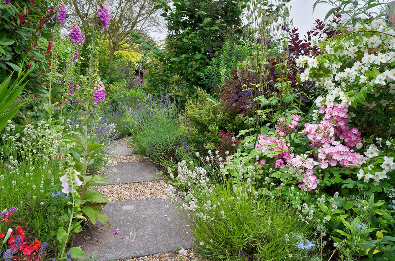 Best Plants for a Cottage Garden and Design Ideas 7