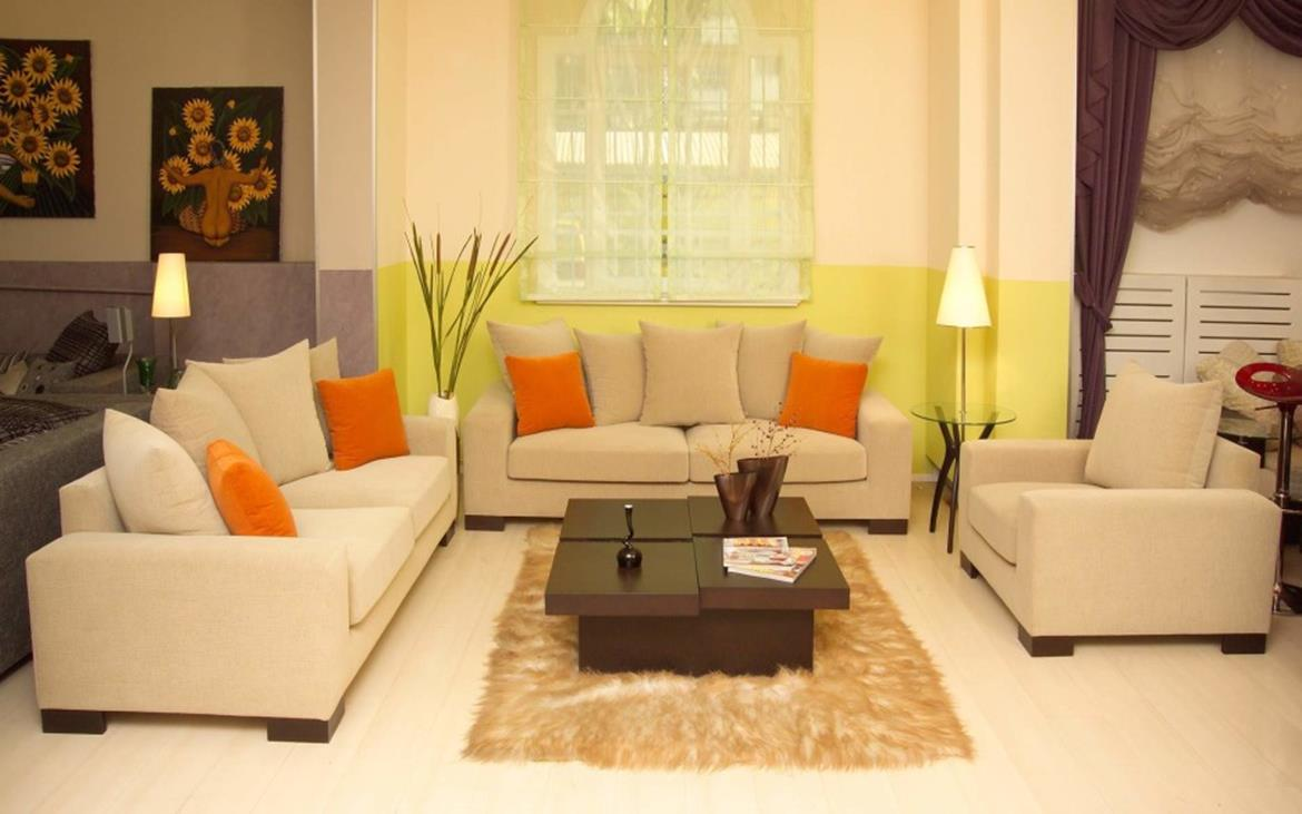 Living Room Ideas For Small Houses 13
