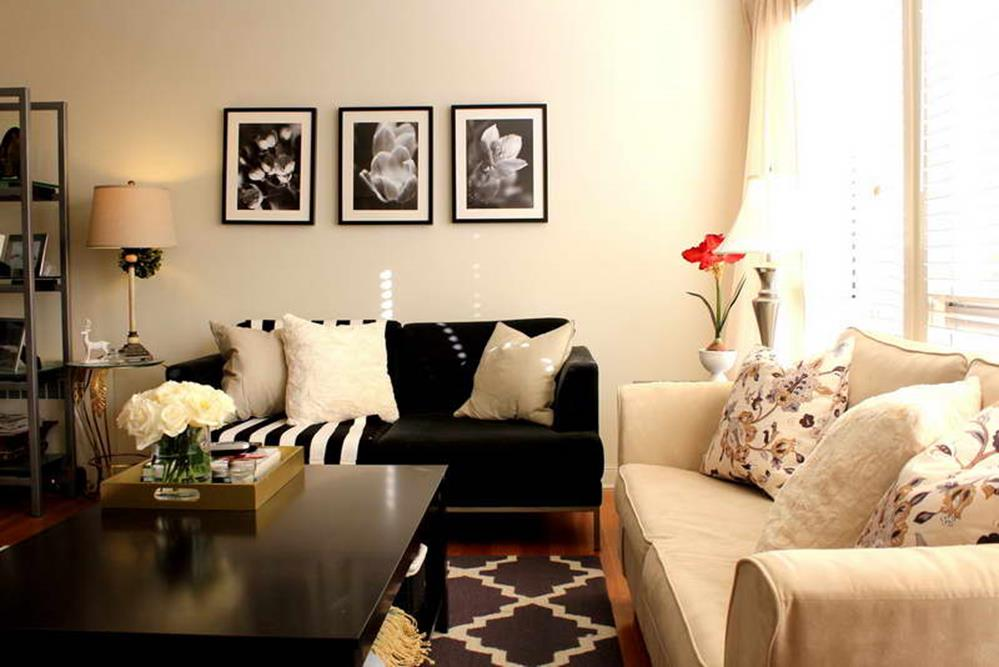 Living Room Ideas For Small Houses 35