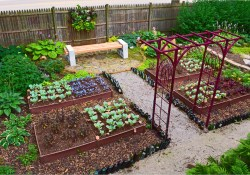 Vegetable Garden Designs 99 Shade Garden Design Technique Ve Able Color Blocking Shawna Coronado 9