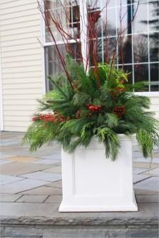42 Beautiful Christmas Outdoor Pot Decorations Ideas 17 Flores Del sol Christmas Container Plantings 8