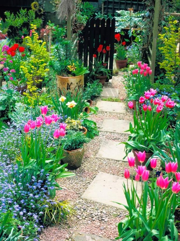 Beautiful Stone Path around Flowers 10
