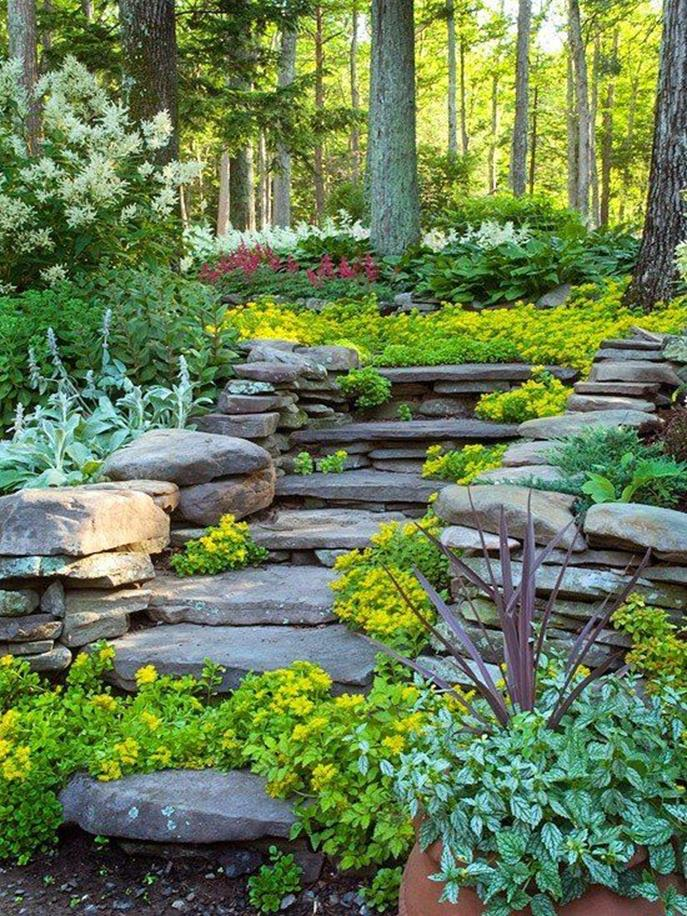 Beautiful Stone Path around Flowers 25
