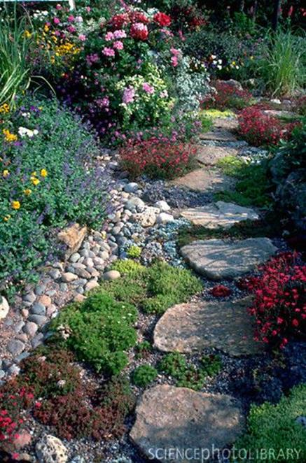 Beautiful Stone Path around Flowers 35