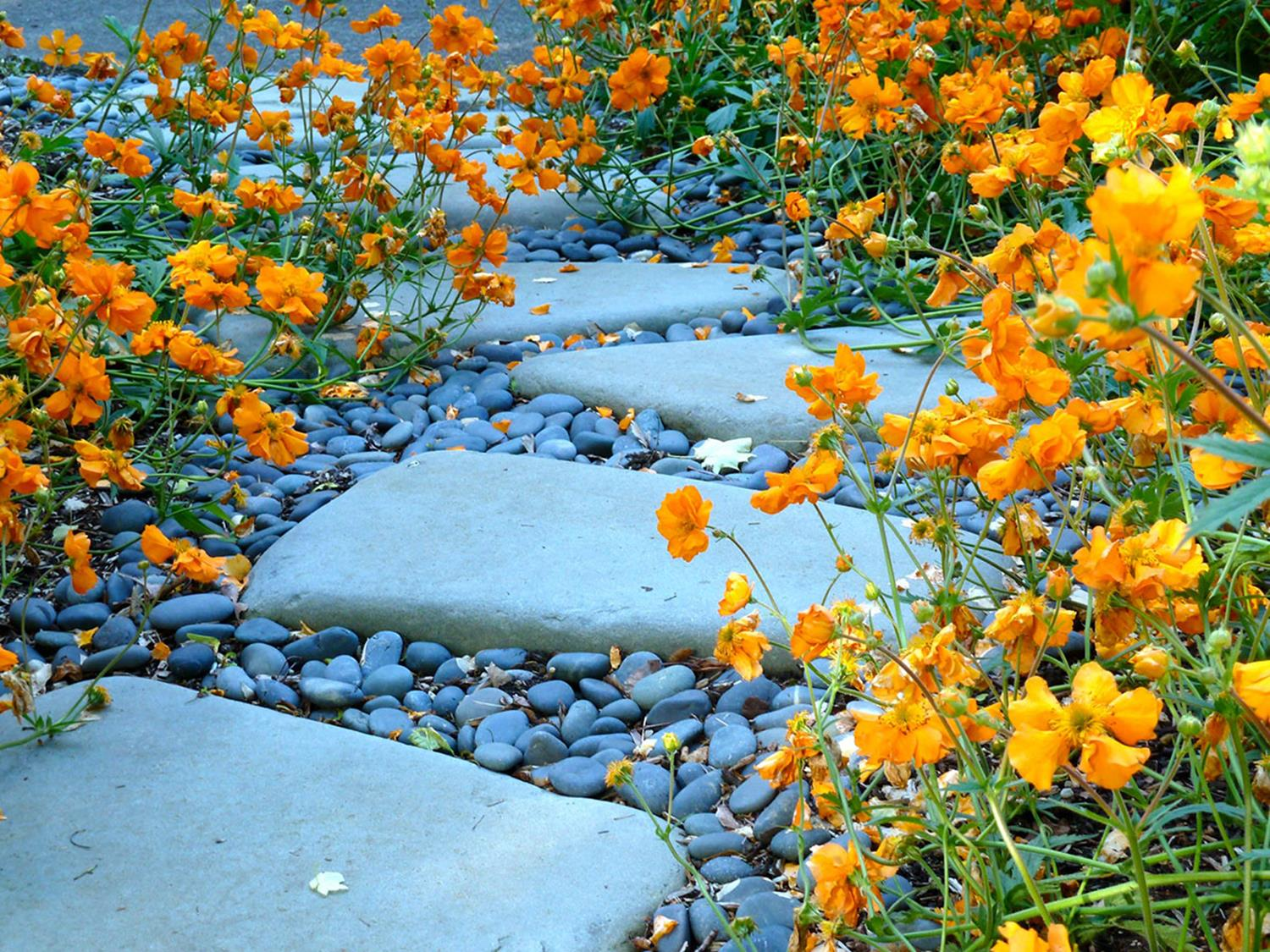 Beautiful Stone Path around Flowers 44