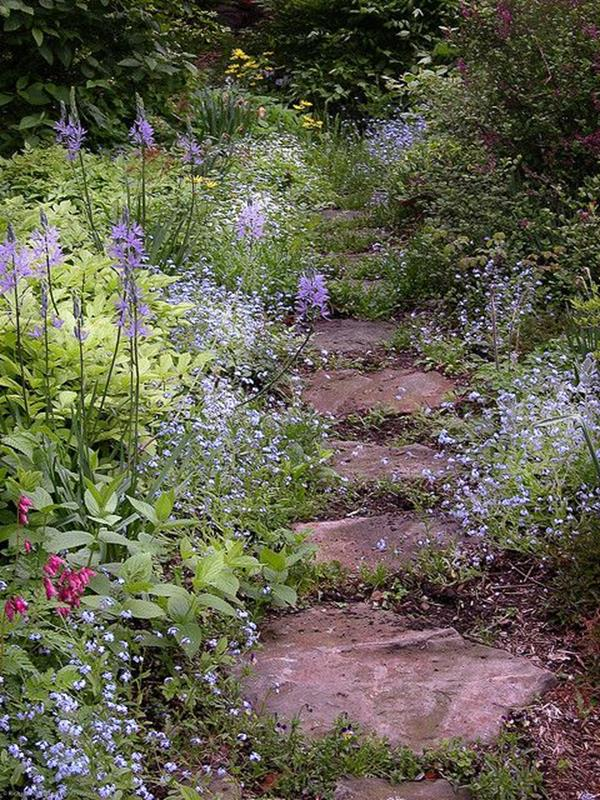 Beautiful Stone Path around Flowers 6