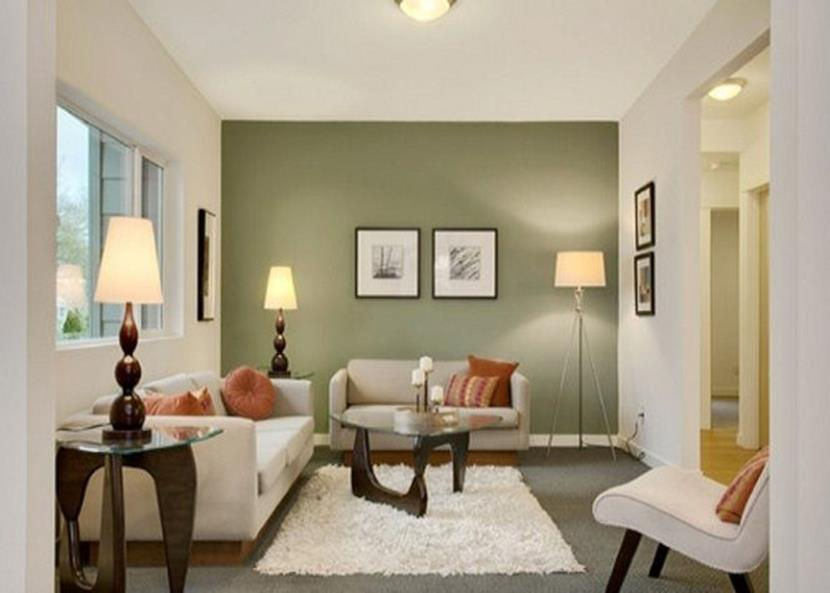 Living Room Accent Wall Color Combinations 12