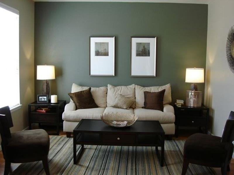 Living Room Accent Wall Color Combinations 7