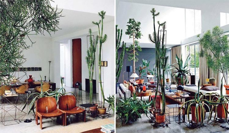 Urban Jungle Room Decor 21