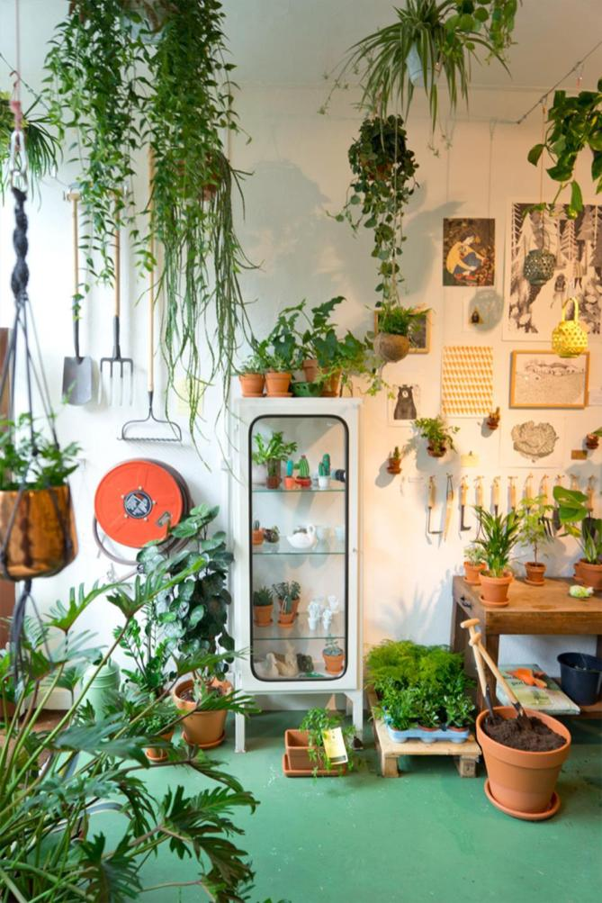 Urban Jungle Room Decor 28