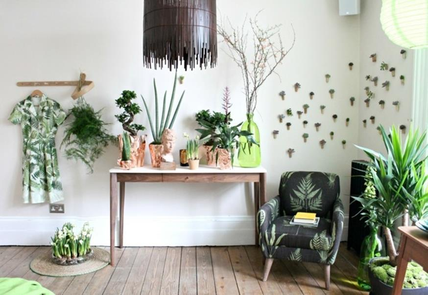 Urban Jungle Room Decor 37