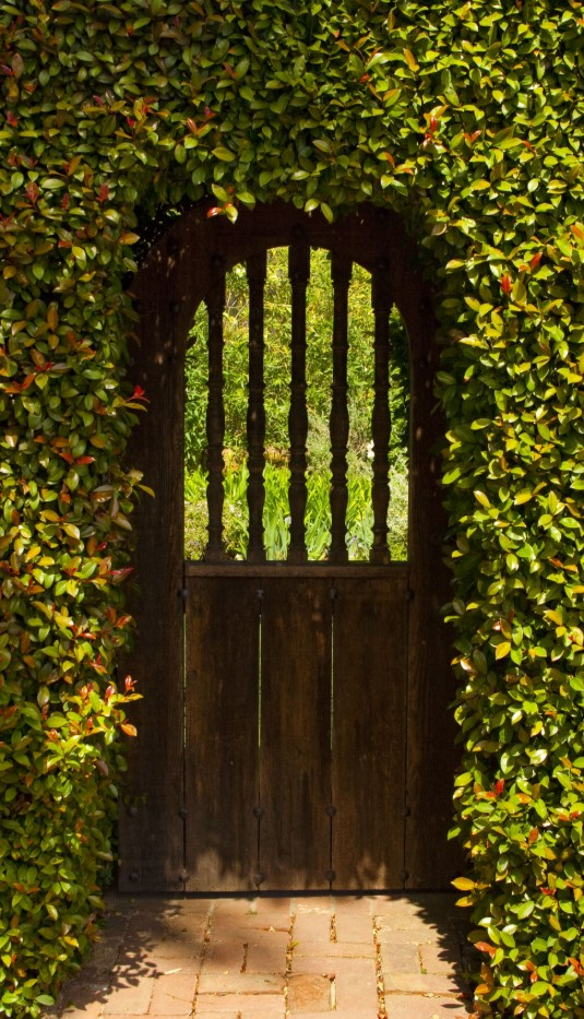 Inexpensive Secret Wood Garden Gates 12