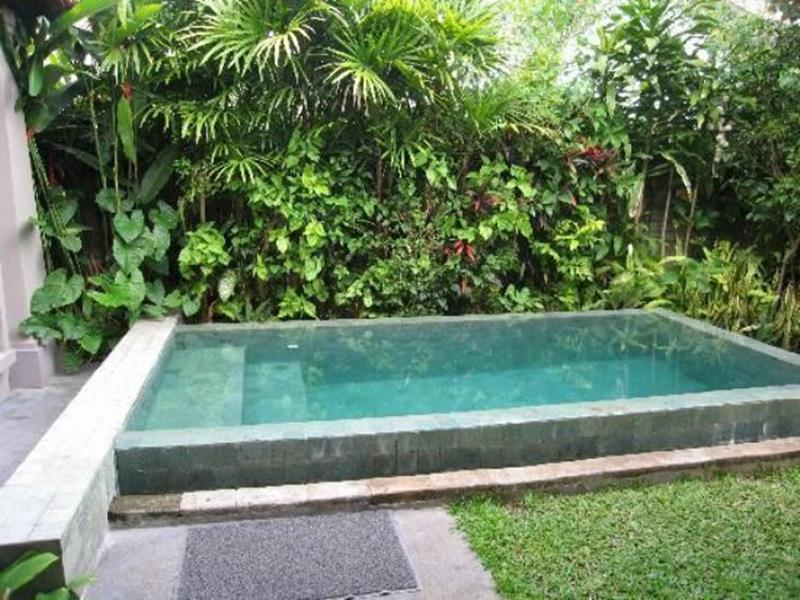 Affordable Small Backyard with Plunge Pool 13