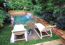 Affordable Small Backyard with Plunge Pool 7