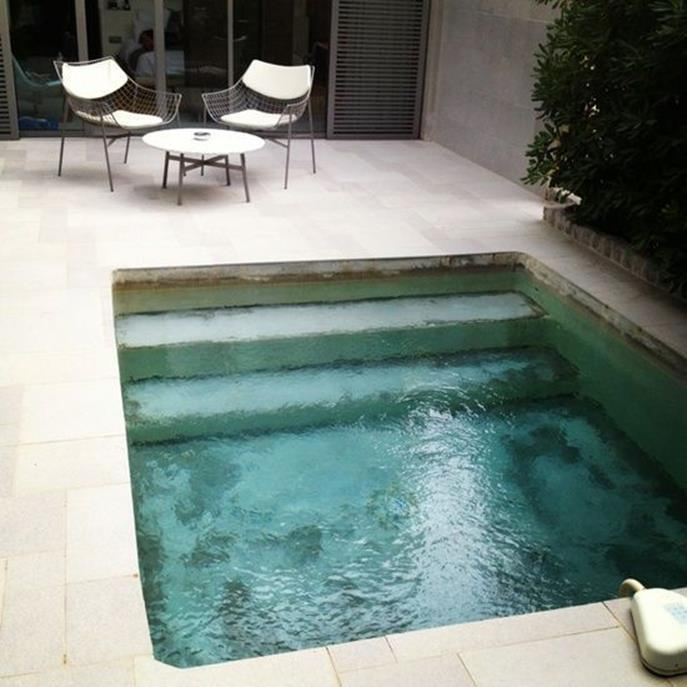 Affordable Small Backyard with Plunge Pool 8