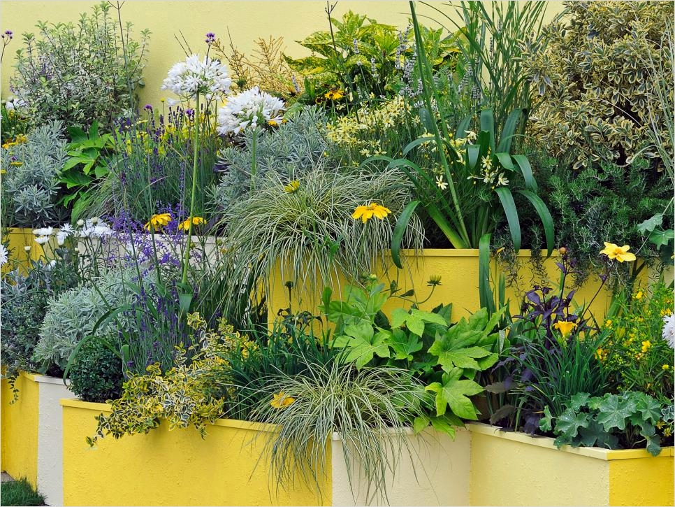 Garden Ideas for Small Spaces 41 Container and Small Space Gardening 4