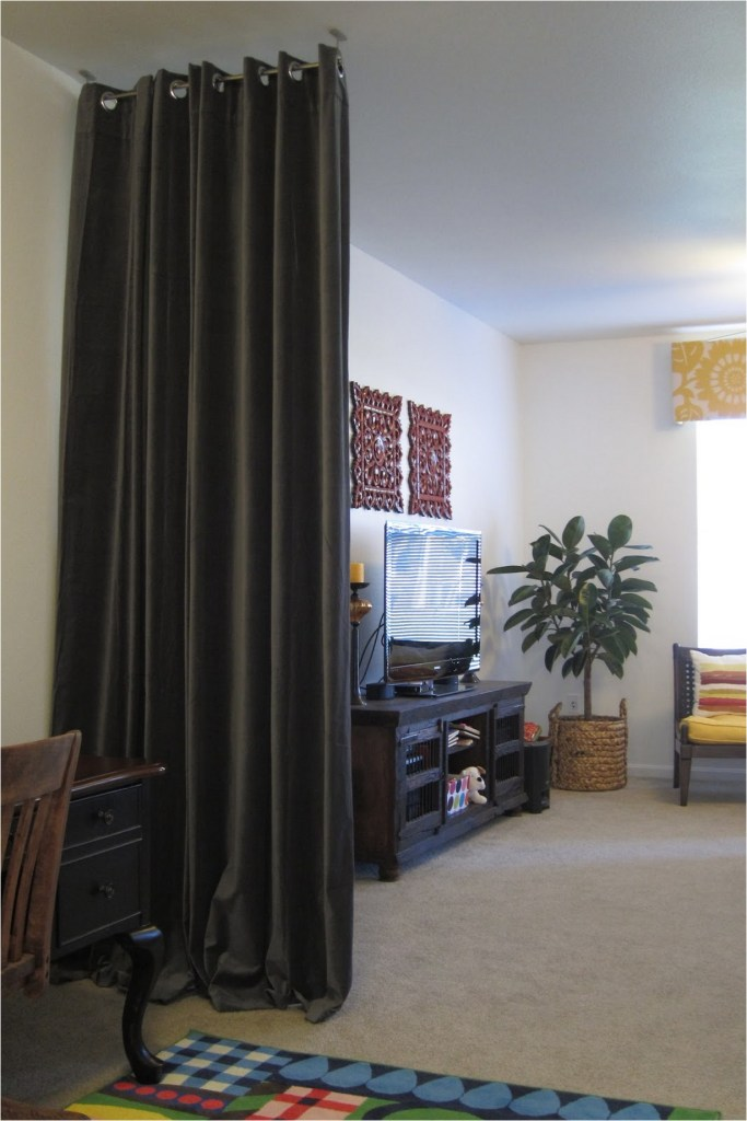 Beautiful And Unique Room Divider Curtains (17)