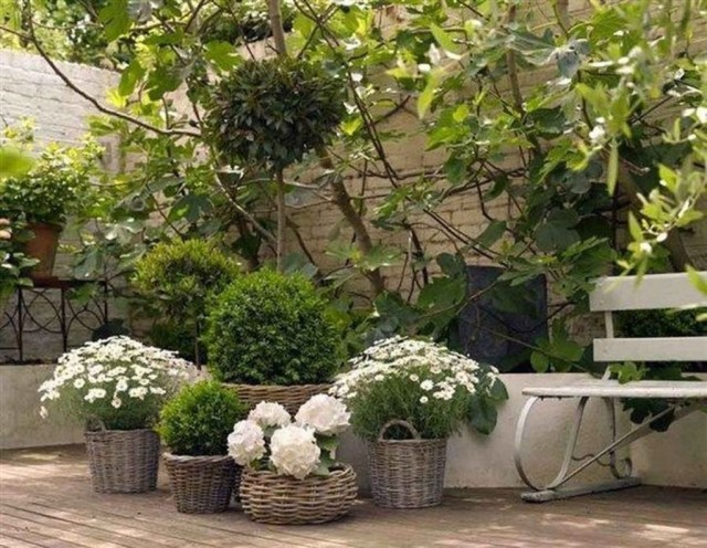 Amazing Garden Design Ideas For Small Space To Try 14