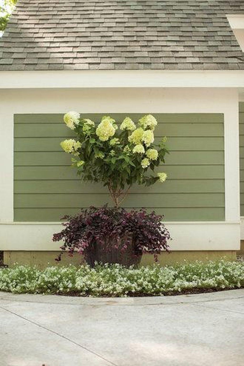 Inspiring Hydrangeas Landscaping Design Ideas To Copy Right Now 05