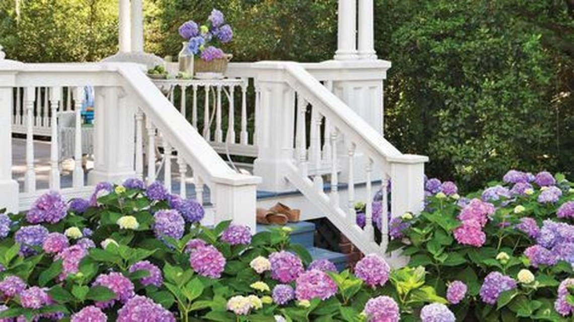 Inspiring Hydrangeas Landscaping Design Ideas To Copy Right Now 27