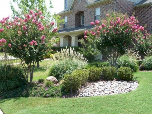 Lovely Flowering Tree Ideas For Home Yard To Copy Now 11