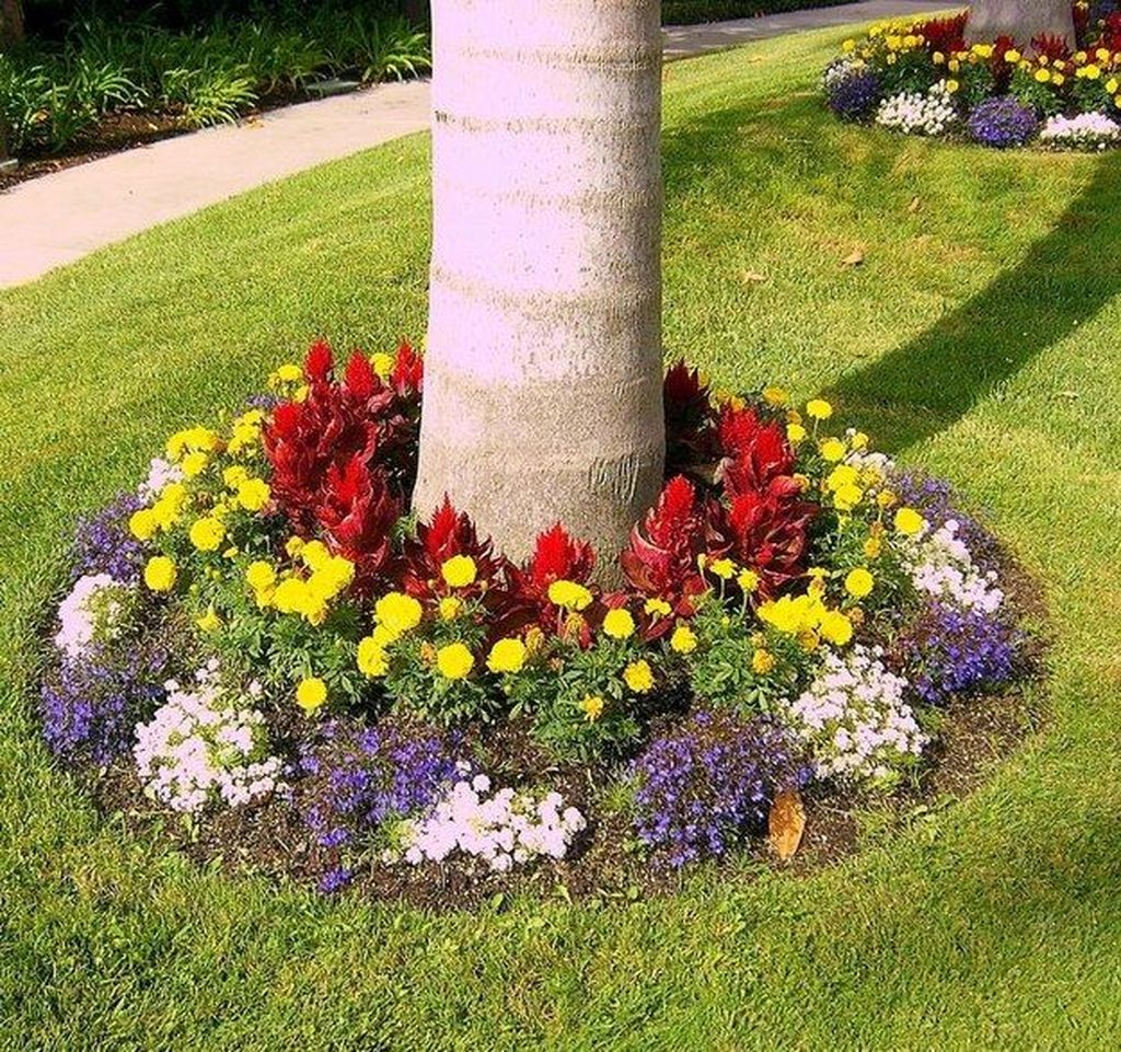 Lovely Flowering Tree Ideas For Home Yard To Copy Now 30