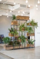Smart Interior Design Ideas With Plants For Home 08