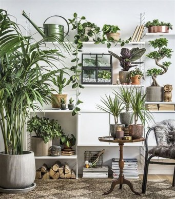 Smart Interior Design Ideas With Plants For Home 09