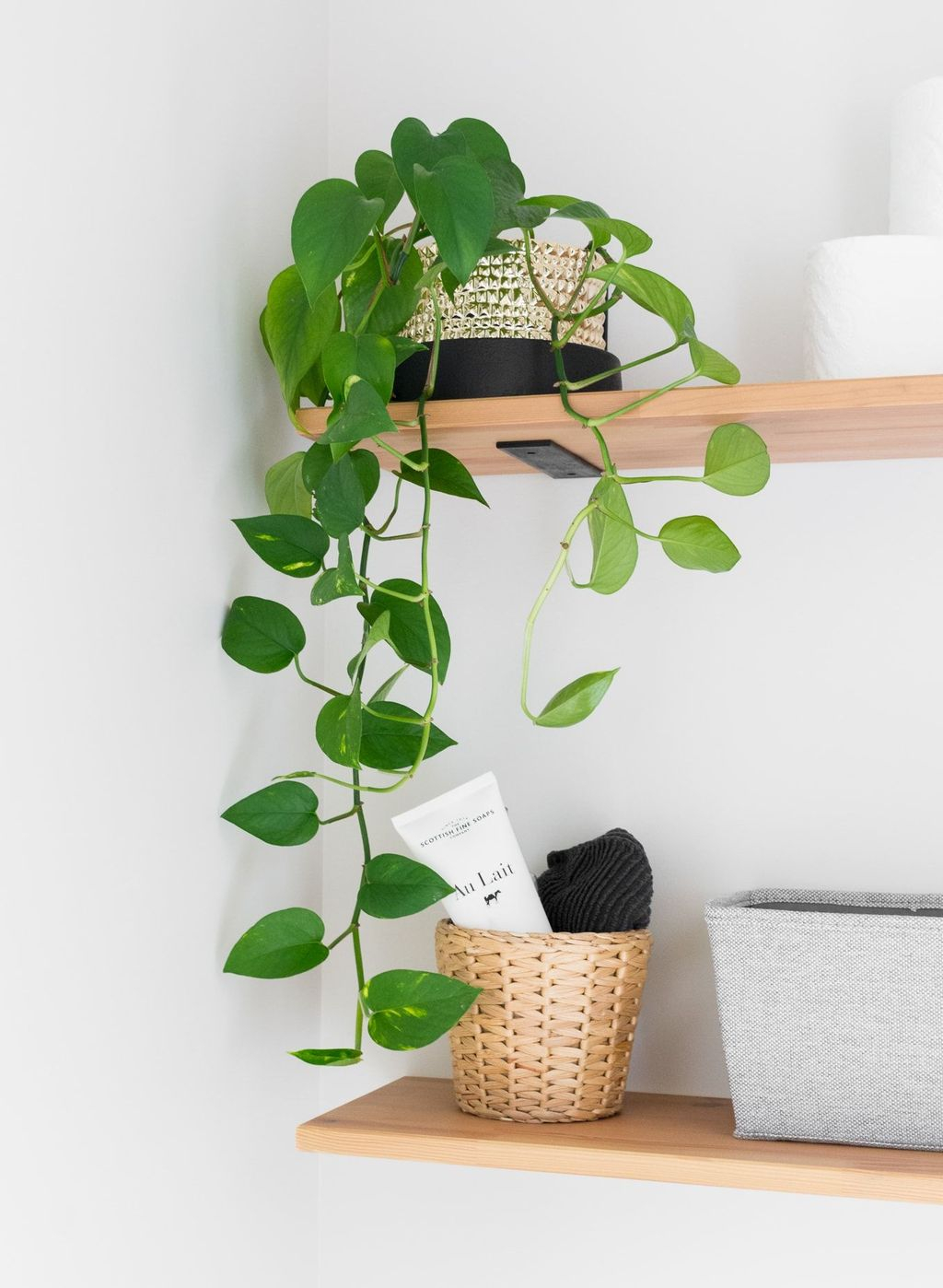 Smart Interior Design Ideas With Plants For Home 13