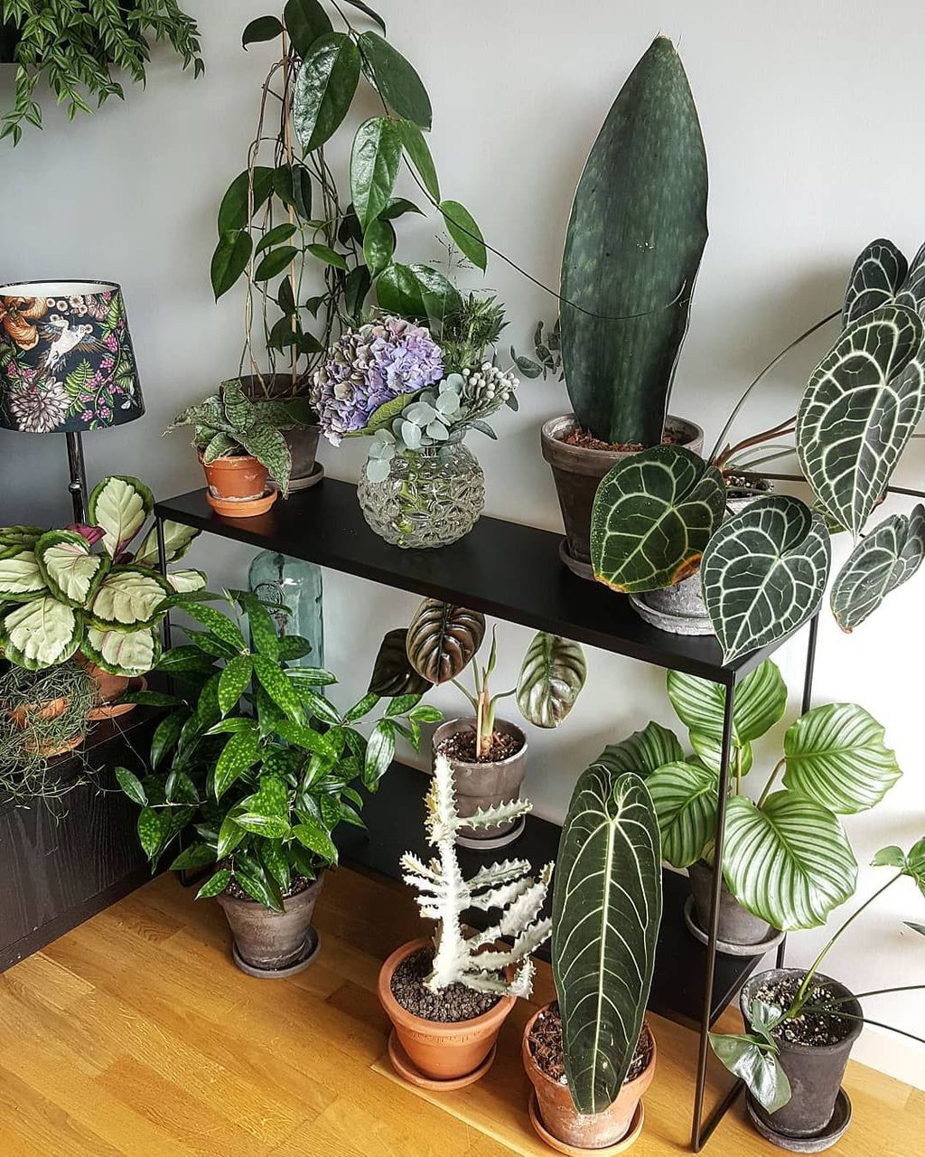 Smart Interior Design Ideas With Plants For Home 23